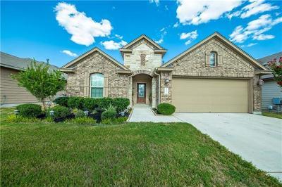 Kyle Single Family Home For Sale: 532 Bottle Brush Dr