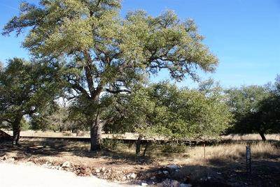 Dripping Springs Residential Lots & Land For Sale: Redemption Ave Lot 43