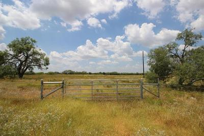 Lockhart Residential Lots & Land For Sale: 9750 State Park Rd