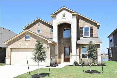 Pflugerville Single Family Home For Sale: 20424 Shellduck Dr