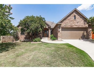 Austin Single Family Home For Sale: 166 Briarpatch Ct