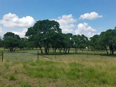 Dripping Springs Farm For Sale: 520 Diamond Path