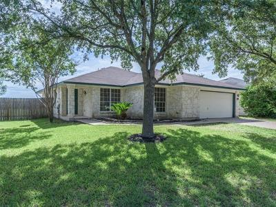 Round Rock Single Family Home For Sale: 1101 Rolling Ridge Dr
