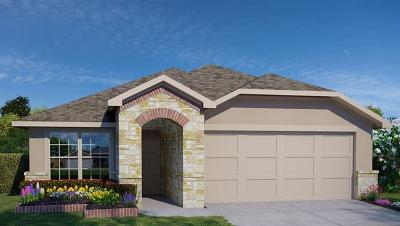 San Marcos Single Family Home For Sale: 213 Dieter