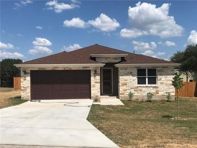 Single Family Home For Sale: 2107 American Dr
