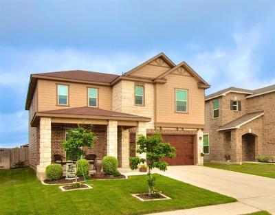 New Braunfels Single Family Home For Sale: 3970 Legend Pond