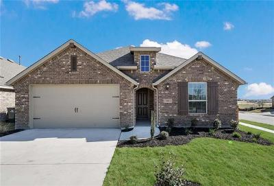 Kyle Single Family Home For Sale: 356 Tailwind Dr
