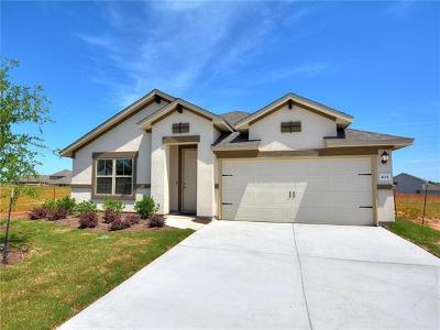 Kyle Single Family Home For Sale: 404 Tailwind Dr