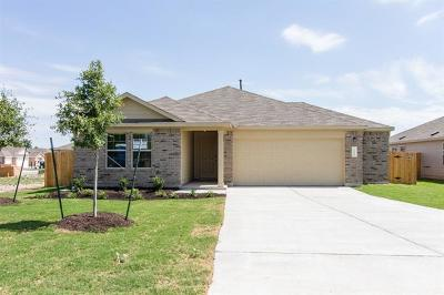 Kyle Single Family Home For Sale: 166 Florida Springs Dr