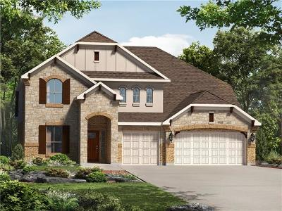 Hays County Single Family Home For Sale: 556 Peakside Cir