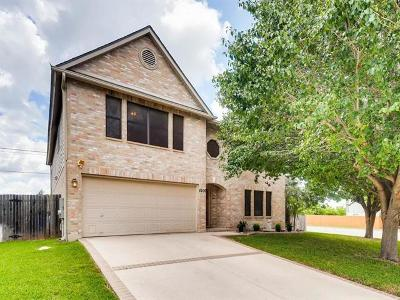 Round Rock Single Family Home For Sale: 4206 Cisco Valley Dr