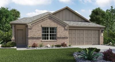Hays County, Travis County, Williamson County Single Family Home For Sale: 7309 Spring Ray Drive