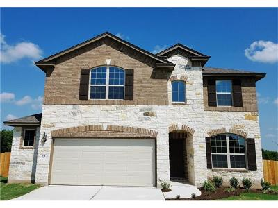 Pflugerville Single Family Home For Sale: 704 Carillion Dr