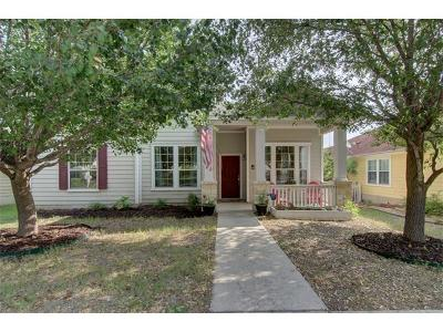 Kyle Single Family Home For Sale: 282 Hutton
