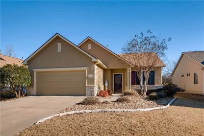 Georgetown Single Family Home For Sale: 123 Lubbock Dr