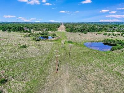 Liberty Hill Farm For Sale: 3100 County Road 207