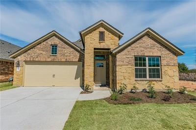 Travis County Single Family Home For Sale: 212 Wooden Lodge Dr