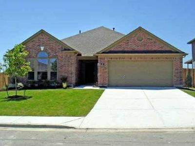 Kyle Single Family Home Pending - Taking Backups: 287 Summer Dr