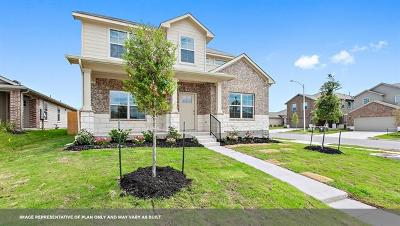 Pflugerville Single Family Home For Sale: 14001 Heywood Dr