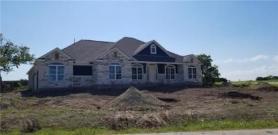 Liberty Hill Single Family Home Pending - Taking Backups: 100 Ken Pelland Cv