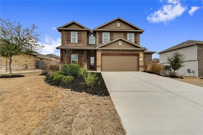 Kyle Single Family Home For Sale: 109 Hollis Ln