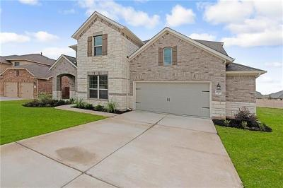 Pflugerville Single Family Home For Sale: 20313 Thumper Jack Ct