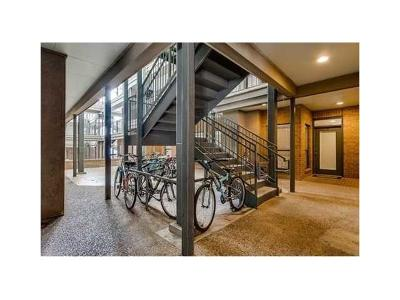 Austin Condo/Townhouse For Sale: 1910 Robbins Pl #103