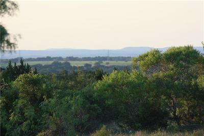 Bell County, Burnet County, Comal County, Fayette County, Hays County, Lampasas County, Lee County, Llano County, San Saba County, Travis County, Williamson County Farm For Sale: County Rd 409 Rd