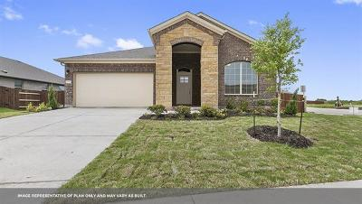 Pflugerville Single Family Home For Sale: 18321 Urbano Dr