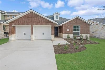 Leander Single Family Home For Sale: 1304 Low Branch Ln