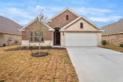 Pflugerville Single Family Home For Sale: 3917 Eland Dr