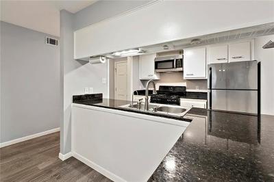 Austin Rental For Rent: 4209 Burnet Rd #106