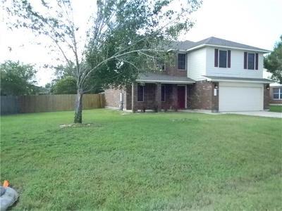 Buda Single Family Home For Sale: 360 Carolyns Way