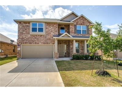 Buda Single Family Home For Sale: 132 Fossil Stone Trl