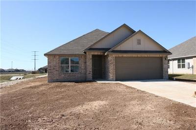 Hutto Single Family Home For Sale: 1008 Lauren Way