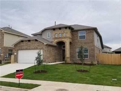 San Marcos Single Family Home For Sale: 722 Old Settlers Dr