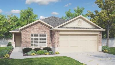 Buda, Kyle Single Family Home For Sale: 335 Cibolo Creek Dr