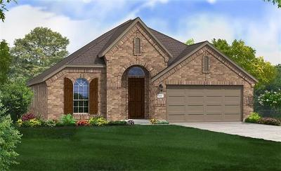 Pflugerville Single Family Home For Sale: 4125 Tin Taqel Path