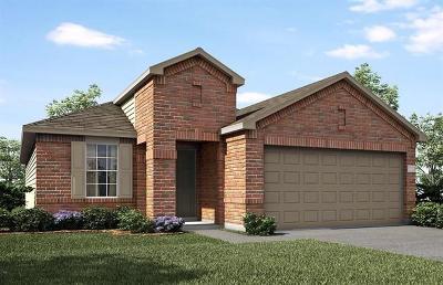 Buda Single Family Home For Sale: 180 Martha Dr