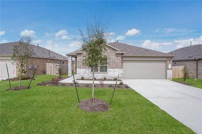 Buda Single Family Home For Sale: 180 Tanzanite Cir