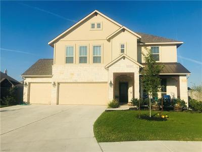 Pflugerville Single Family Home For Sale: 3840 Nightjar View Ter