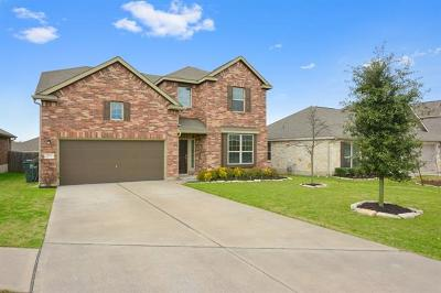 Buda Single Family Home For Sale: 204 Travertine Trl