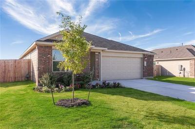Kyle Single Family Home For Sale: 308 Mineral Springs Dr