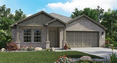 Williamson County Single Family Home For Sale: 228 Xanadu Dr