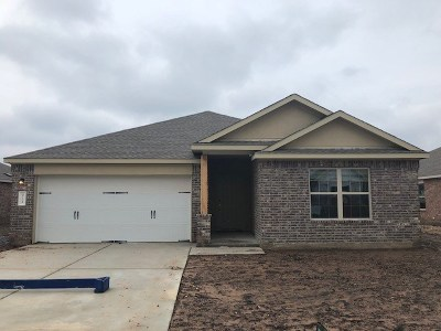 Leander Single Family Home For Sale: 921 Hillrose Dr