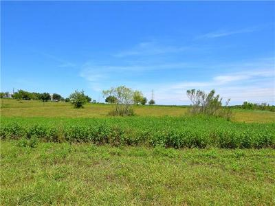 Kyle Residential Lots & Land For Sale: 12956 Camino Real
