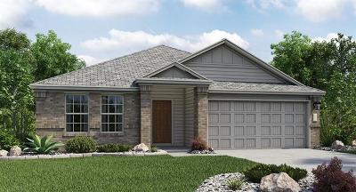 Hutto Single Family Home For Sale: 202 Balsam Way