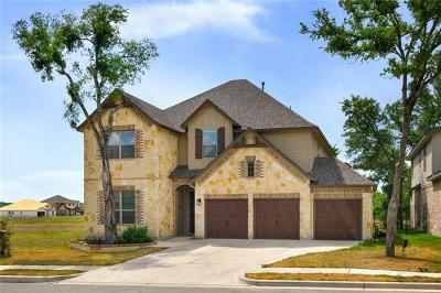 San Marcos Single Family Home For Sale: 424 Ancient Oak Way