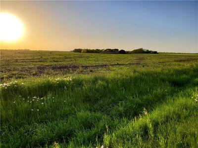 Taylor Residential Lots & Land Pending - Taking Backups: Lot 1 Fm 619