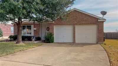 Pflugerville Single Family Home For Sale: 15001 Lantern Dr